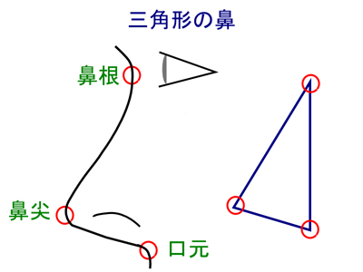 三角形の鼻