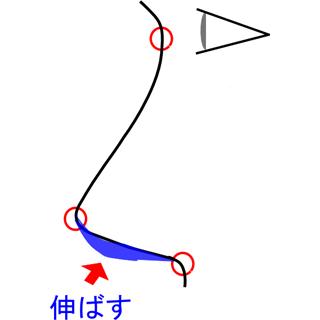 鼻柱を下(斜め下方)に伸ばす