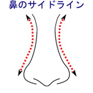 鼻のサイドライン