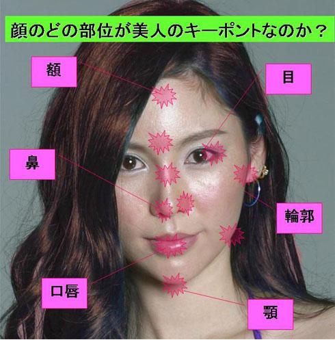 顔のどの部位が美人のキーポイントなのか