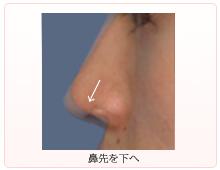 鼻先を下へ伸ばす