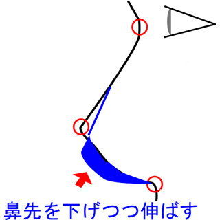 鼻先自体の位置も下げつつ、鼻柱を伸ばす