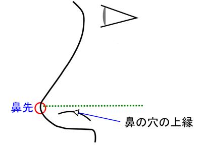 綺麗な四角形の鼻