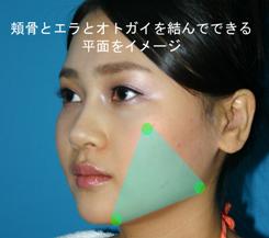 頬骨の真ん中と下顎角(エラ)とオトガイの角を結んだ三角形で出来る面をイメージ